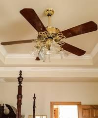 Een plafondventilator met kelkjes
